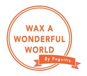 wax a wonderful world2